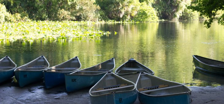 August 25: Canoeing Trip